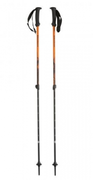 Палки треккинговые Black Diamond First Strike Kids Trekking Poles BD112158