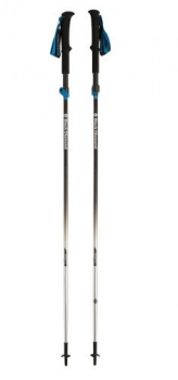 Палки треккинговые Black Diamond Distance FLZ Trekking Poles 110 BD112178