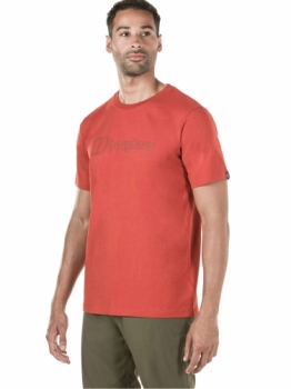 Футболка Berghaus Big Outline Logo Tee