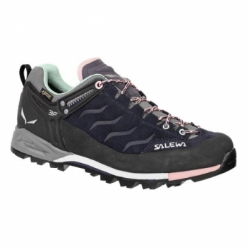 Кроссовки Salewa WS MTN Trainer GTX 63416