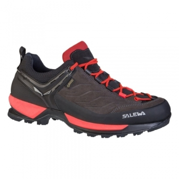 Кроссовки Salewa WS MTN Trainer GTX 63468