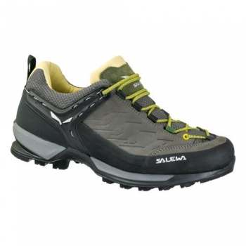 Кроссовки Salewa MS MTN Trainer L 63469